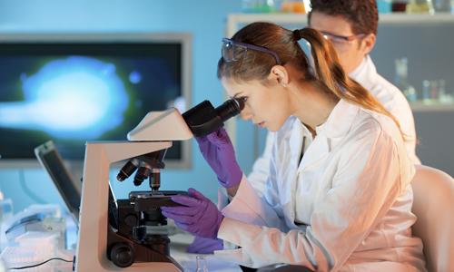 Исследование анализа крови на наличие антител