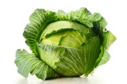 Запрет на употребление капусты при панкреонекрозе
