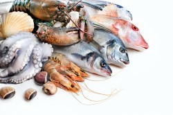Морепродукты при диете
