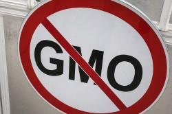 Отказ от продуктов содержащих ГМО