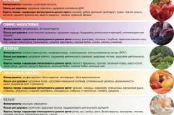 Польза цветной диеты для организма