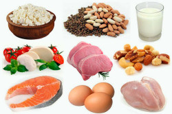 Белковая пища - основа питания в бодибилдинге