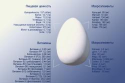 Пищевая ценность и химический состав яиц