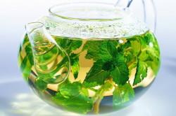 Травяные настойки при загибе желчного пузыря