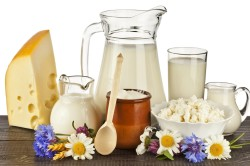 Запрет на молочные продукты при бгбк диете