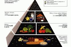 Пирамида диеты в бодибилдинге