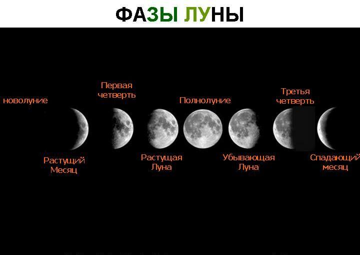 вынуждены когда убы вающая луна вас волнует
