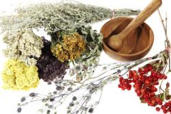 Народные методы лечения селезенки