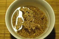 Замачивание семян пшеницы в воде для проращивания