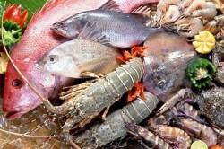 Рыба и морепродукты при яблочной диете