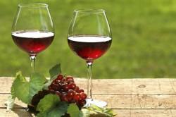 Вино в малых дозах